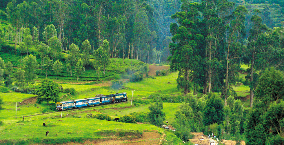 ooty queen of hill stations