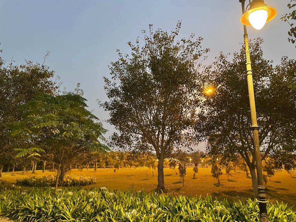 night view at janeshwar Mishra park