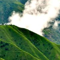 """Chail"" A Wonder Place of Himachal - Tour Guide"