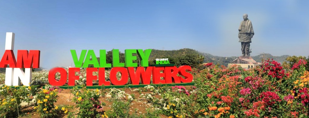valley of flowers gujarat