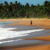 Beaches In South Coastal Greatest Attraction For Tourists